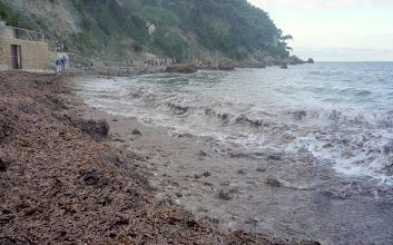 Photo: Le sentier très littoral.