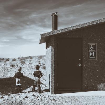 Toilets di Laura Benvenuti