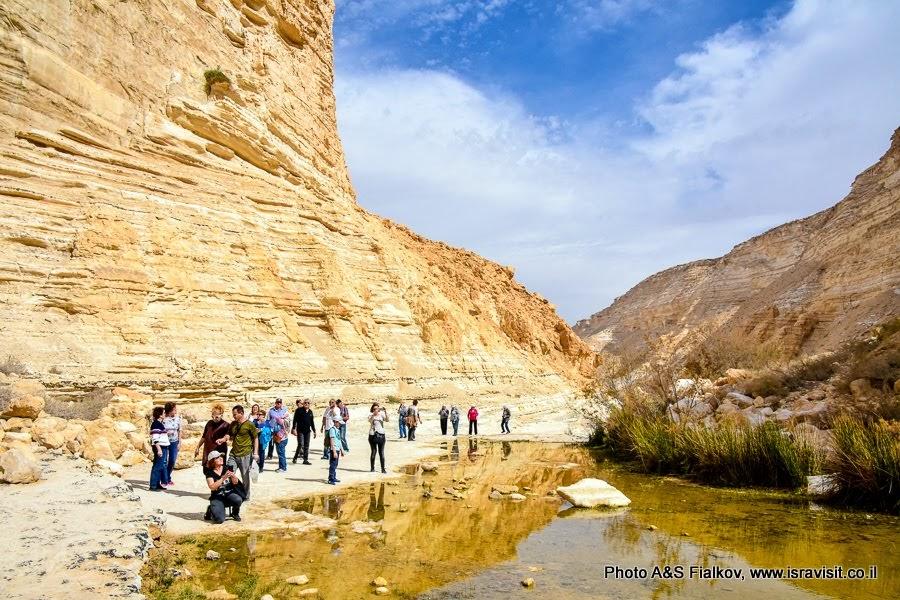 Экскурсия по пустыне Негев.