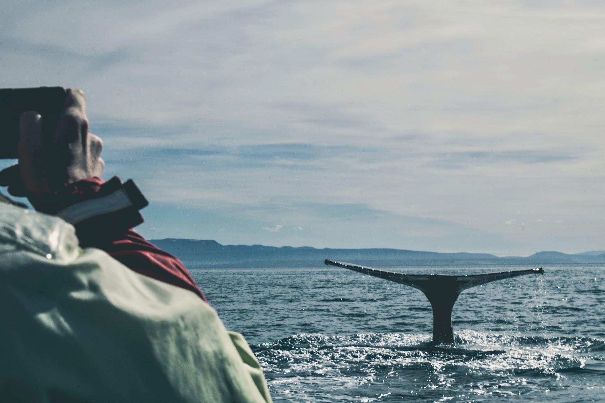 vakantie-noord-ijsland
