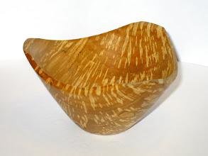 Photo: Three point bowl in spalted big leaf maple. Feb 2009.