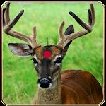 Deer Hunt in African Safari 1.0 Apk