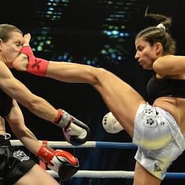 womans fights by Nenad Mihajlovic - Sports & Fitness Boxing ( kick, fight, fighting, boxing, women, kickboxing )