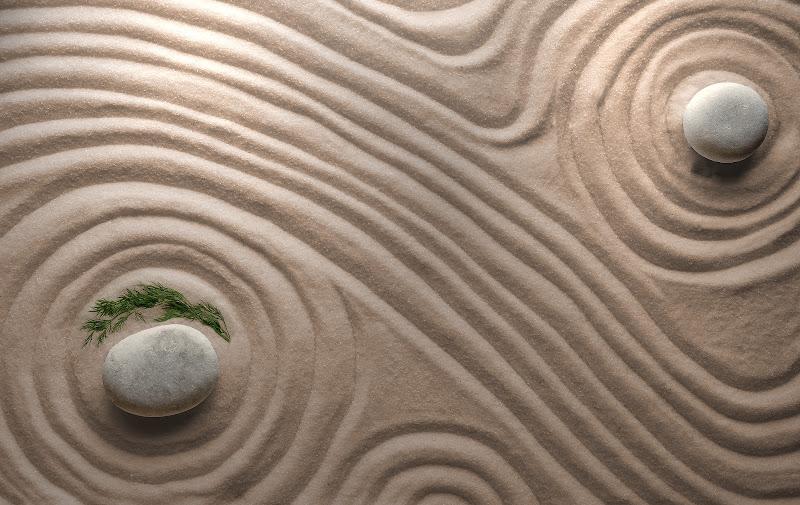 Zen di Daniela Ghezzi