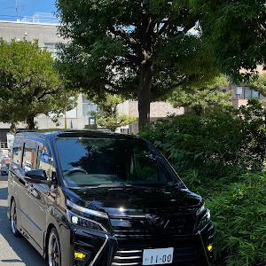 ヴォクシー ZRR80Wのカスタム事例画像 takeshi1100さんの2021年07月24日21:00の投稿