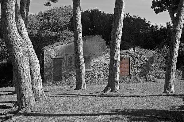 Vecchio casale di Luciano Fontebasso