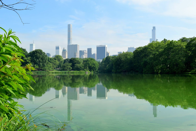 Riflessi a Central Park di richard_87
