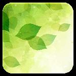 Spring CM13/CM12.1 Theme v1.1