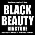 Black Beauty Ringtone icon