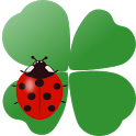 Coccinella Live Wallpaper icon