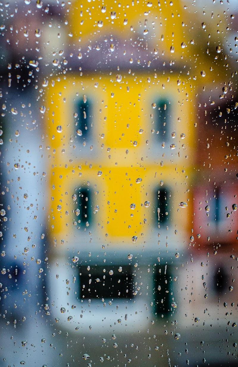 Dalla finestra..... di mapi2019