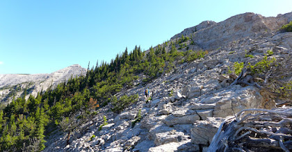 Photo: Below the castle - false summit on horizon. Atticus (near center of photo) and I scrambled up above the trees (the most challenging part of our hike).