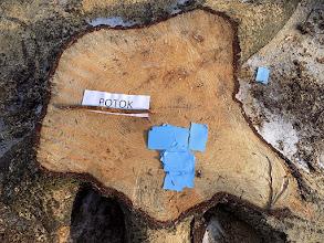 Photo: Získávali jsme dřevo, maso a vodu k přežití na ostrově...