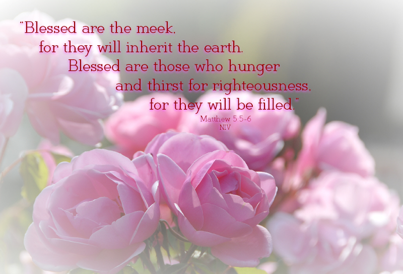 Photo: Blessed Are The Meek. Matthew 5: 5-6 NIV