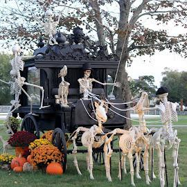 No Bones About It. by Diane Mondalto - Public Holidays Halloween ( bones, skeleton, hearse, halloween,  )