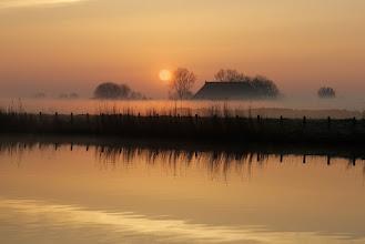 Photo: Landschappen. Opkomende zon in de ochtendnevel. Foto: Coen Waltmans