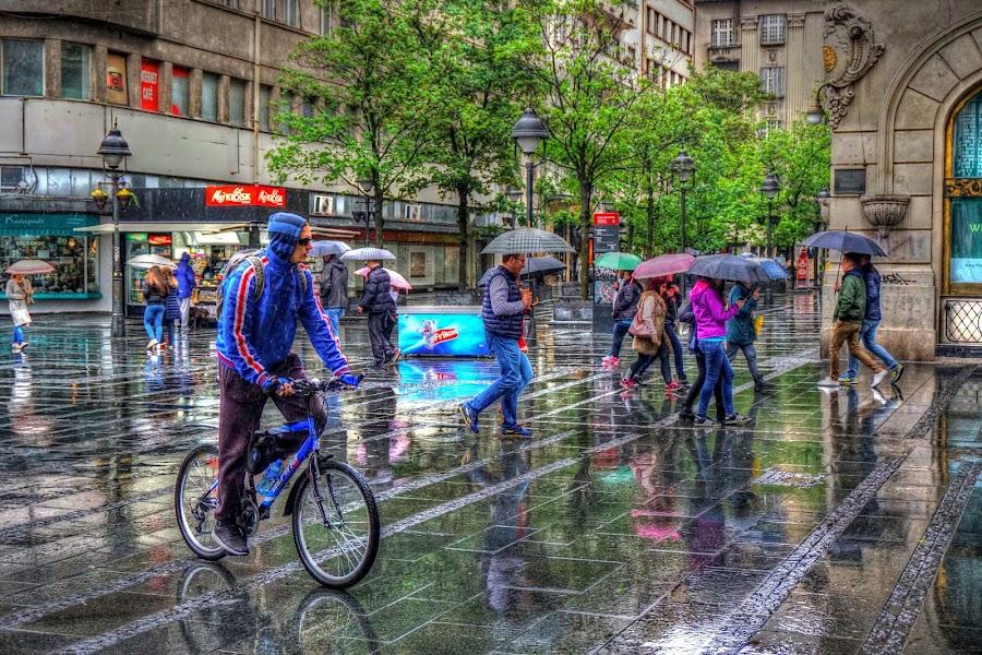 One rainy day by Dragan Nikolić - City,  Street & Park  Street Scenes