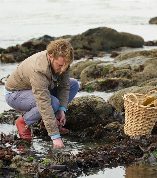 Kobus van der Merwe foraging on the West Coast.