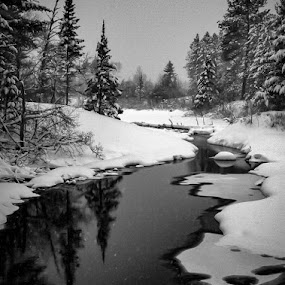A time to reflect by Michael Haagen - Landscapes Waterscapes ( reflection, snow, river, water,  )