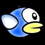 Stupid Bird Anniversary Icon