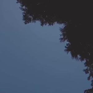 フェアレディZ Z34 ver.stのカスタム事例画像 りゅーさんの2020年03月04日18:46の投稿