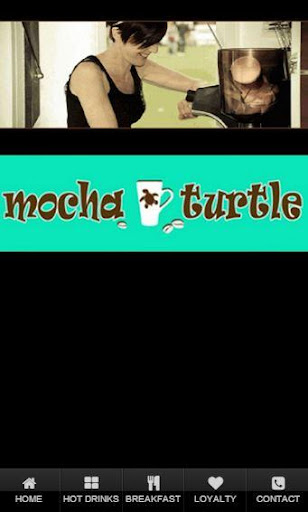 Mocha Turtle