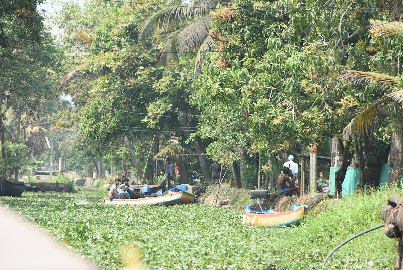 backwaters di Lucionap