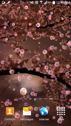Sakura Japan Live Wallpaper