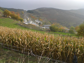 Photo: San Martín y campos de maíz