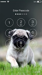 Fluffy Pug Lock Screen - náhled