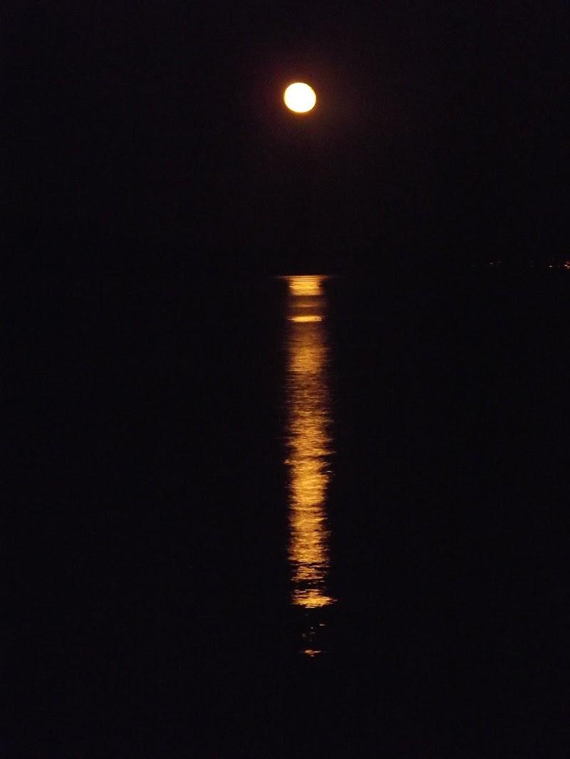 Luna di Alessia