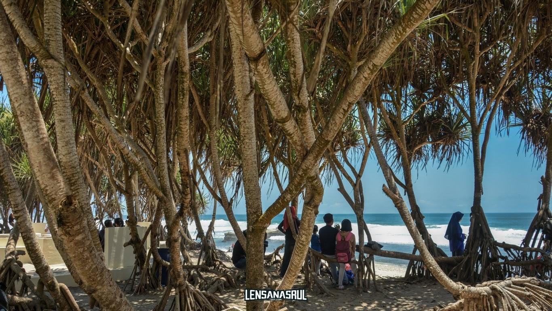 Berteduh di bawah pohon