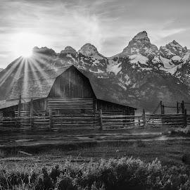 Mormon Sunrise by Givanni Mikel - Black & White Landscapes ( mormon, national park, starburst, teton, row,  )