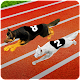 Dog Racing Fever 3D (game)
