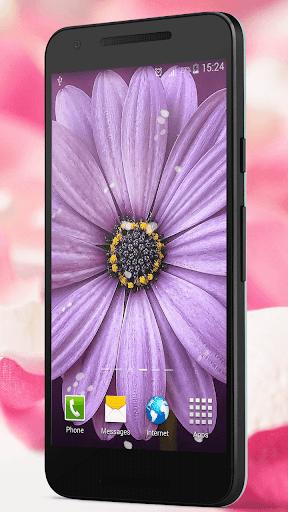 玩個人化App|花瓣 动态壁纸免費|APP試玩