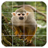 Tile Puzzles · Monkeys