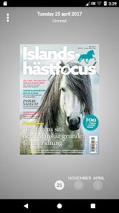 Islandshästfocus - náhled