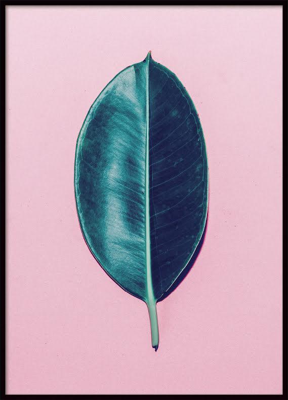 Green Leaf, Poster