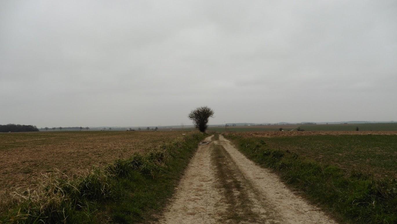 veldweg in het open landschap ten zuiden van Arras