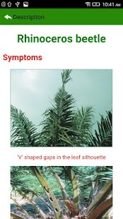 Oil Palm Pests English- screenshot thumbnail