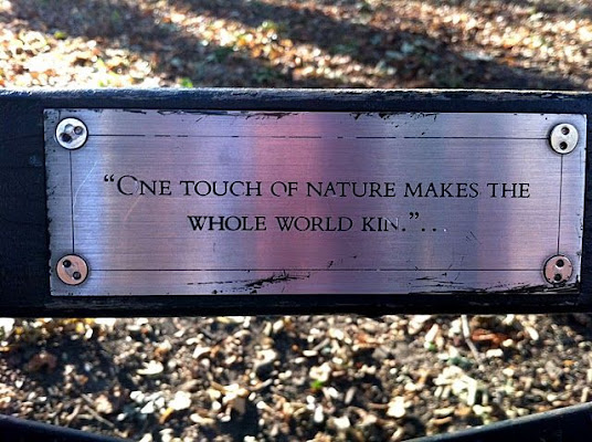 Quotes The Central Park Bench Project