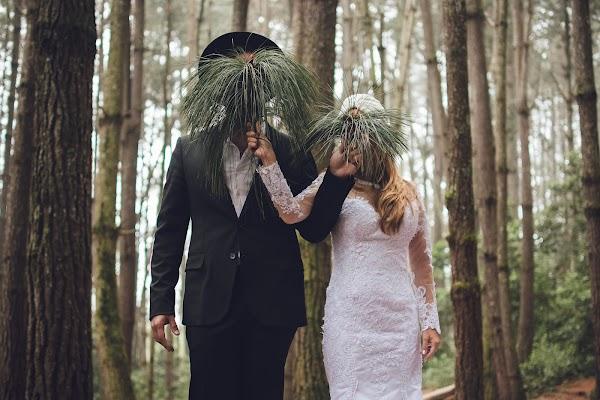 Fotógrafo de bodas Elias Mercado (mercadodefotos). Foto del 23.03.2017