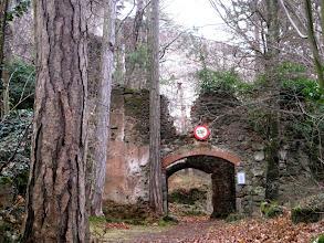 Photo: Ruine Merkenstein