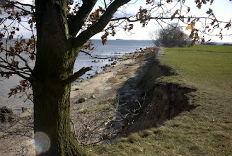 Photo: Alt Kamp - am Bodden