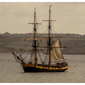 Pirates of Penzance by Cornish Nige  - Transportation Boats ( sails, pirates ships, seascape, boats, sea )