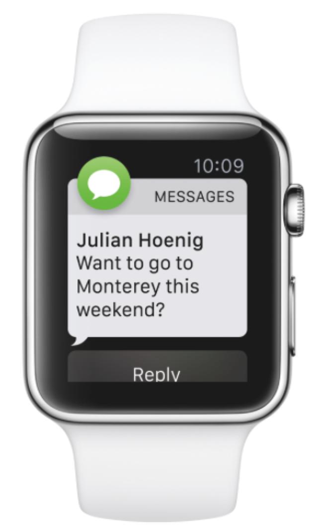 애플와치 SMS