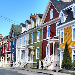 Pretty Homes All in a Row by Russ Quinlan - Buildings & Architecture Homes ( colour, houses, newfoundland, color, st. john's, jellybean )