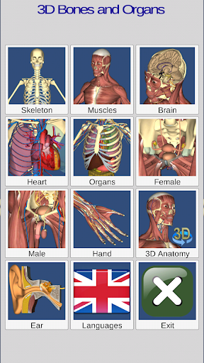 3D Bones and Organs (Anatomy) 3.1.0 screenshots 1