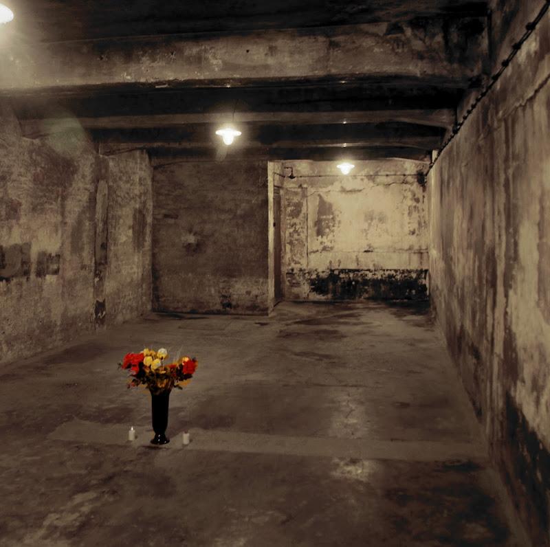 Auschwitz-la Memoria prevale sul Male di CarloErasmo