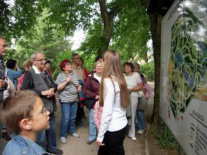 Photo: A botanikus kert térképe